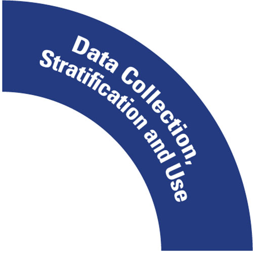 dashboard goal graphic data collection stratification and use
